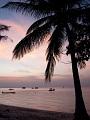 海の楽園フォト062