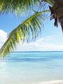 海の楽園フォト092
