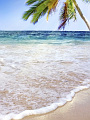 海の楽園フォト171