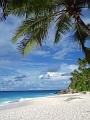 海の楽園フォト220