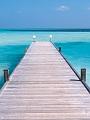 海の楽園フォト233