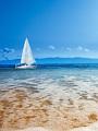 海の楽園フォト341