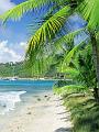 海の楽園フォト405