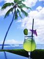 海の楽園フォト412