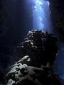 海の楽園フォト417