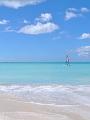 海の楽園フォト457