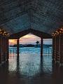 海の楽園フォト497