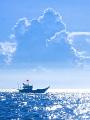 海の楽園フォト528