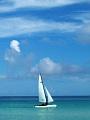 海の楽園フォト013