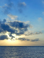 海の楽園フォト042