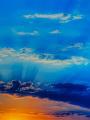 海の楽園フォト045