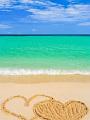 海の楽園フォト049