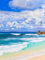 海の楽園フォト057
