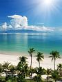 海の楽園フォト079