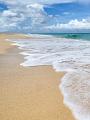 海の楽園フォト082