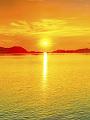 海の楽園フォト088