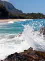 海の楽園フォト090