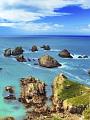 海の楽園フォト096