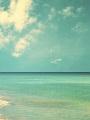 海の楽園フォト100