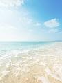 海の楽園フォト111