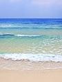 海の楽園フォト112