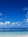 海の楽園フォト116