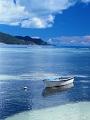 海の楽園フォト117