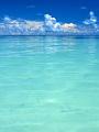 海の楽園フォト118