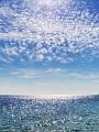 海の楽園フォト135