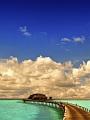 海の楽園フォト137