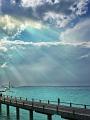 海の楽園フォト138