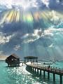 海の楽園フォト139