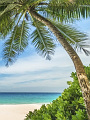 海の楽園フォト146