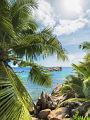 海の楽園フォト156