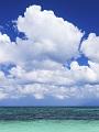 海の楽園フォト159