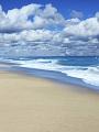 海の楽園フォト165