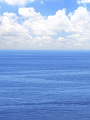 海の楽園フォト168