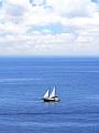 海の楽園フォト169