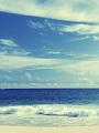 海の楽園フォト174