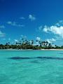 海の楽園フォト215