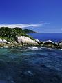 海の楽園フォト219
