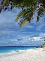 海の楽園フォト221