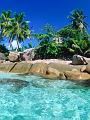 海の楽園フォト229