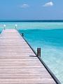 海の楽園フォト234