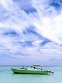 海の楽園フォト237