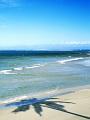 海の楽園フォト239