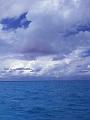 海の楽園フォト254