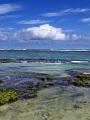 海の楽園フォト265