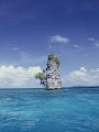 海の楽園フォト269