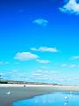 海の楽園フォト270